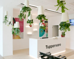 tupperware_giuseppealbera© 58